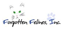 Forgotten Felines, Inc. cat and kitten rescue